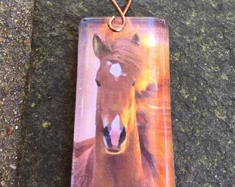 Horse Glass Tile Pendant   The  Flowing Mane  Beauty   Gift for Horse Lover  Domino size Glass Cabachon
