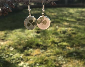 Silver, clover earrings