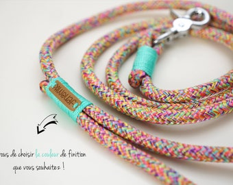 Paracord dog leash Multicolor / PPM Cord dog leash / Rope dog lead / Dog accessories / Leash for small dog / Leash for large dog