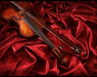 Violin - Still Life Photography - Large Photo Print - Art Photography (VLDR01)