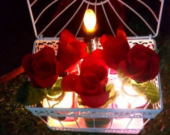 Roses and Hearts Romantic Light Display by Zeeboze
