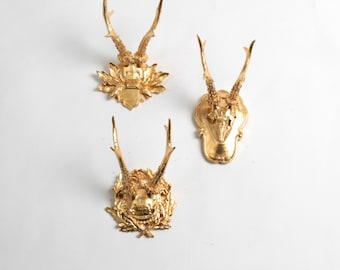 OVERSTOCK - Gold Faux Deer Antler Skull Caps w/Filigree - Set of 3 Gold Resin Deer Caps w/Filigree - Mounted Deer Antlers