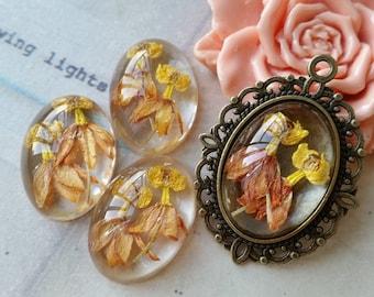 18 x 25 mm Oval Shape Honey-orange Colour Dried Flowers Flat Back Resin Cabochons (.im)