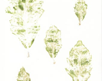 Five Leaves