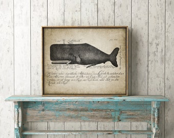 Whale Print - Whale Illustration - Vintage Whale Art - Marine - Whale Art - Digital Art - Printable Art - Single Print #10- INSTANT DOWNLOAD