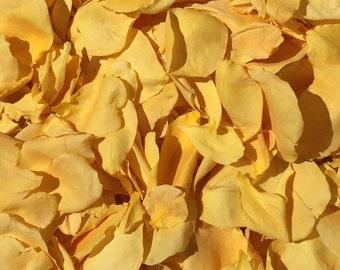 Yellow Rose Petals.  50 Cups. Wedding Petals. Real Rose Petals. Flower Petals. Flower Confetti. Flower Girl Petals. Dry Petals. USA