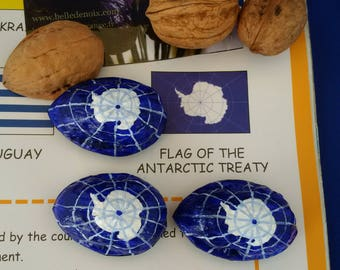 Flag Magnet Antarctic