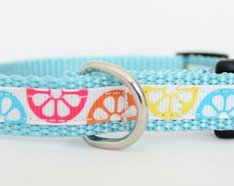 "Slice of Summer 5/8"" Dog Collar"