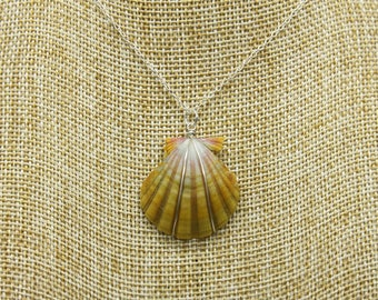 Sunrise Shell Pendant in Sterling Silver