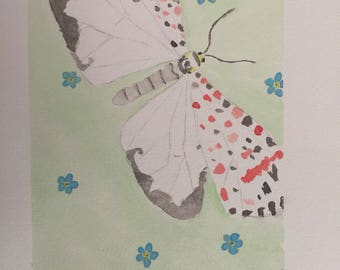 Forget Me Nots and Moth (9x12in)