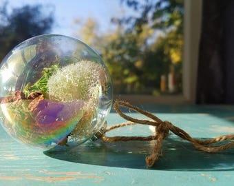 "Single Iridescent ""Unicorn"" Glass Terrarium Ornament Filled with Assorted Mosses, Lichen, and Bark"