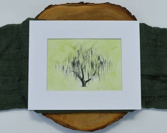 Weeping Willow Tree Print - Aurora, Chicago - Pen and Ink Illustration - Heather L. Young - Watercolor Fine Art Print