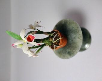 Dollhouse scale Cattleya Orchid Plant OOAK
