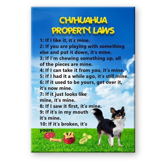 Chihuahua Property Laws Fridge Magnet No 2