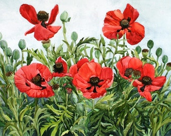 Red Poppy Field Painted from My Garden 10 x 15