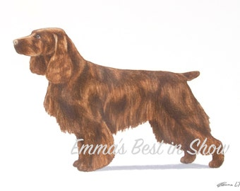 Field Spaniel Dog - Archival Fine Art Print - AKC Best in Show Champion - Breed Standard - Sporting Group - Original Art Print