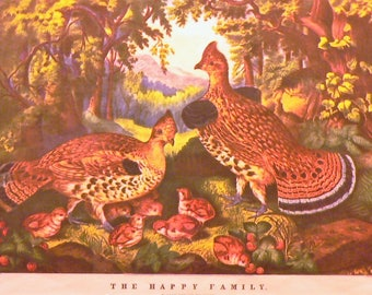 1946 Currier & Ives Quails Matted Vintage Print