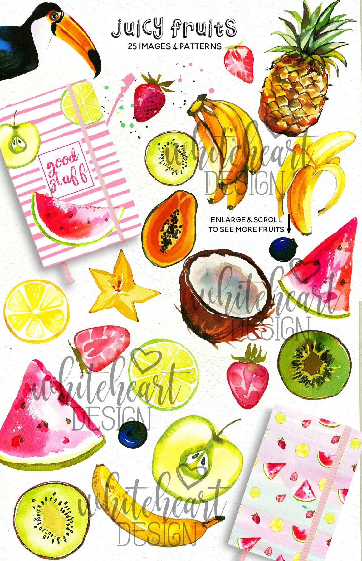 Tropical Fruits Watercolor Clipart Summer Tropics Pineapple ...