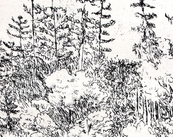 Forest: wall art decor,  a hand pulled limited edition etching in black and white.