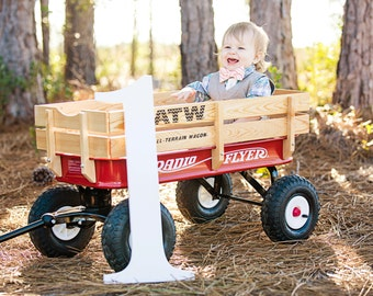 Giant Number Photo Prop - Large Wooden Number 1 One Photography Props or Party Decor First Birthday (Item - NMG100)