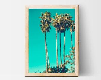 Palm Trees, Palm Tree Print, Tropical Wall Art Decor, Interior Wall Art, Instant Download, XXL Printable Poster, Photography, Green, Aqua