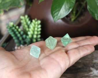 Set of 3 Green Fluorite Octahedron Stones good for wire wrapping, jewelry making, chakra, reiki healing, altar spaces, rock & crystal shop