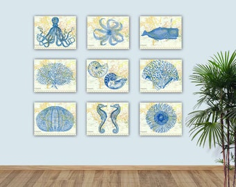 Nautical Sea Life art, Sea creatures prints, sea fan nursery, create your display, bathroom decor, octopus nautilus sea horse whale urchin