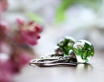 Tiny green moss dangle earrings, real plant jewellery, Irish moss, gift for her, sterling silver drop earrings,  resin jewellery, moss green