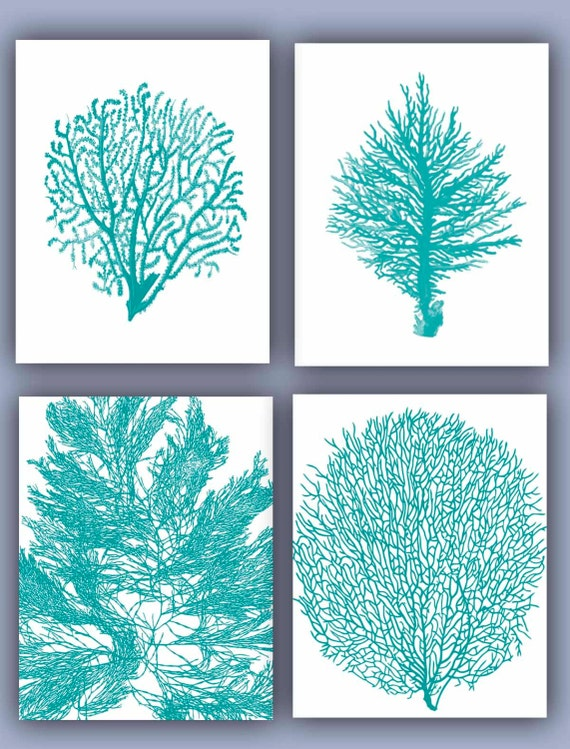 Sea Fan Collection Prints Set Of 4 11x14 Seafan Coral Home