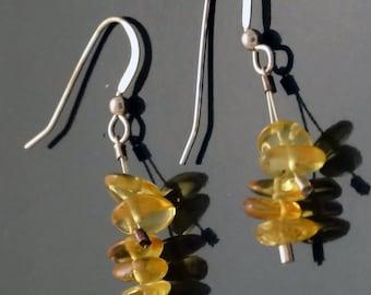 Yellow Amber Earrings