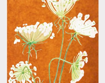 Large Art Print:  Queen Anne's Lace on Rusty Orange