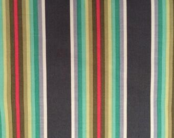 CHIPPER TICK TOCK  Half Yard Stripe by Tula Pink