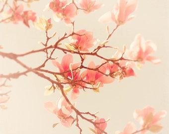 Magnolia Photograph, Spring Decor, Blush Pink, Pale Blue, Wall Art Print, Flower Image, Nature Photography, Nursery Wall, Girls Room Artwork