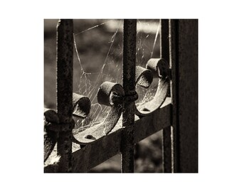 Iron Gate, Photography, Instant Download, Vintage Photography, Sepia Photography, Print Yourself, Print Download, Home Decor, Wall Decor