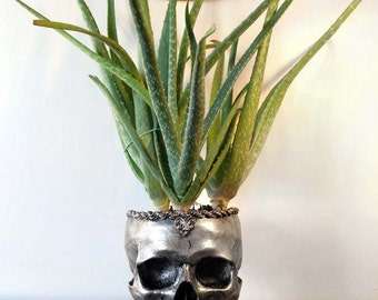 Human Skull Planter, Pewter Finish