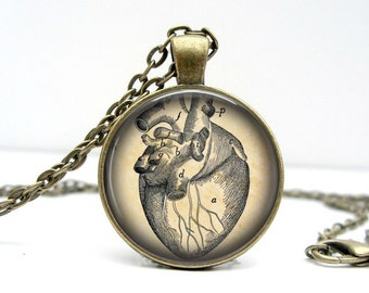 Anatomical Heart Sketch Necklace : Glass Picture Pendant Photo Pendant Handcrafted Jewelry  (1445)