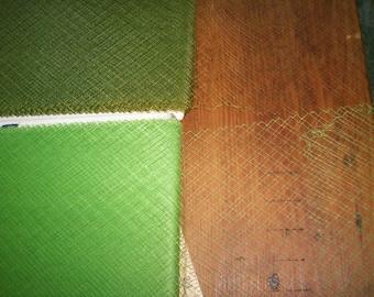 Ancien français chapeau de soie voilage en 2 verts