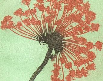 Original Etching Print CARROT FLOWER Garden Home Fine Art Printmaking Kitchen Shabby Decor Hand Pulled Print 3 colors 11x10