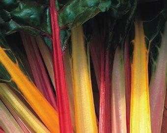 Swiss Chard Rainbow 150 seeds Beat Leaf Vegetable