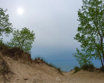 Dune.  This photo was taken on a partly foggy day by Lake Michigan, Beverly Shores, Indiana.