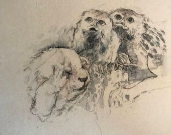 Ink Sketch of Dog and Owls