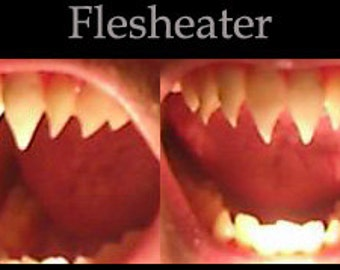 Flesh-eater Fangs (Custom made from scratch)