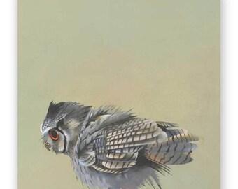Scops Owl - 10 x 10 Wings on Wood Decor