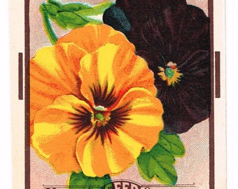 Original vintage chromolithographed seed packet pack c1920 General Store garden folk art Dalton New York Pansy Fancy Mixed
