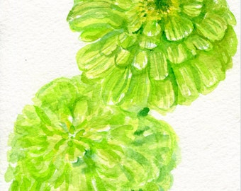 Zinnias Watercolor Painting Original, Flower Painting, small Floral Wall Art 5 x 7, original watercolor painting of lime green zinnia