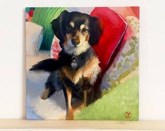 Dog Portrait 5x5