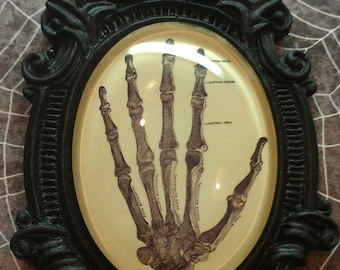 Cool Vintage Skeleton Hand with a Baroque setting Necklace
