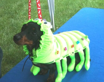 Dog Halloween Costume-caterpillar