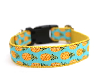 "3/4"" Pineapple buckle or martingale dog collar"