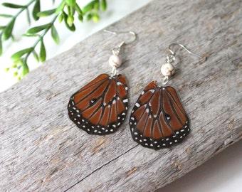 Queen Butterfly Earrings, Real Butterfly Wing Earrings, Natural History Jewelry